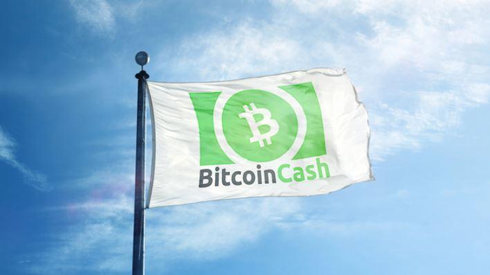 BitcoinCash-20210506.JPG